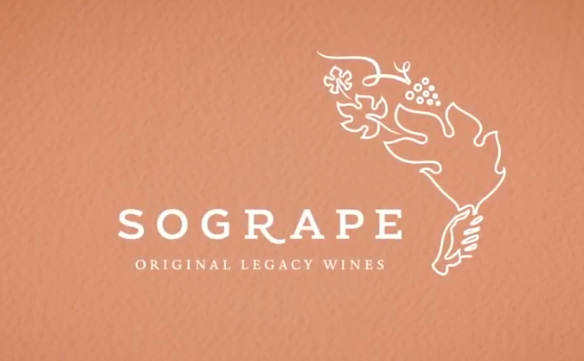 Sogrape 75th Anniversary